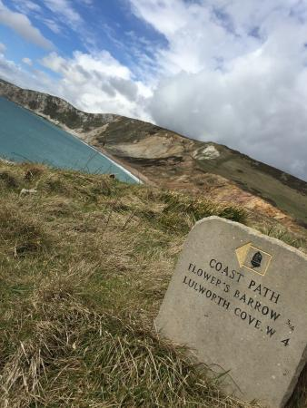 Isle of Purbeck-bild
