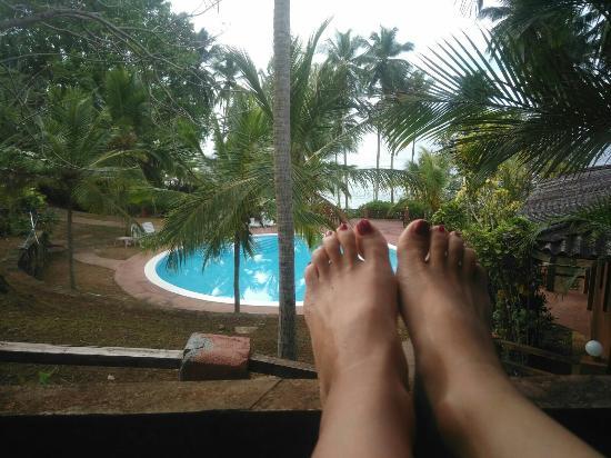 Eva Lanka Hotel: IMG-20160406-WA0000_large.jpg