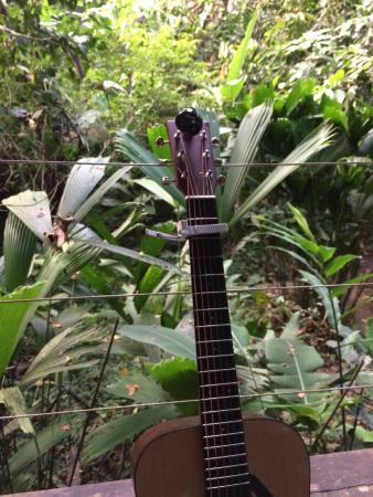 Foto de El Tucan Jungle Lodge