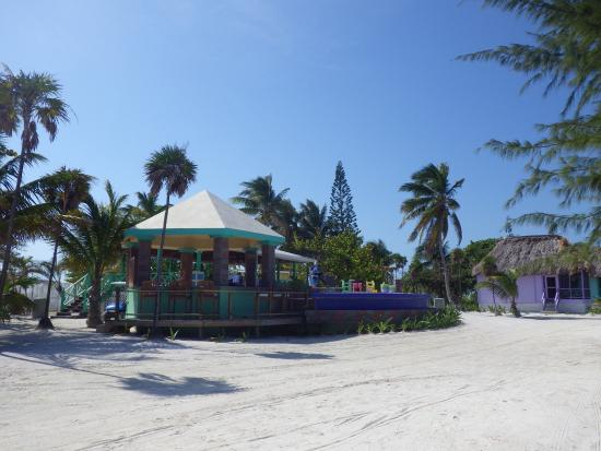 Turneffe Island, Belice: Beach is just to the right- outddoor bar, covered dining and pool.
