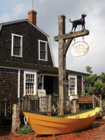 Black Dog Tavern Hours