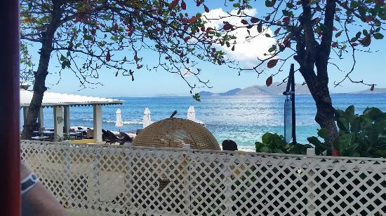 Tortola Highlights Tour: 20160406_095705_large.jpg