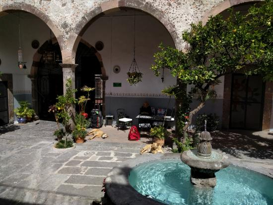 Casa Carmen: Courtyard during the day