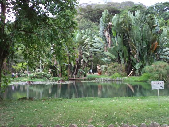 植物園 (ジャルジン ボタニコ)