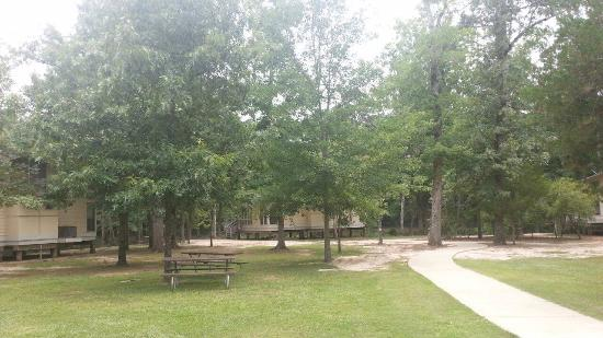 Bastrop, LA: Looking at the cabins from the parking area