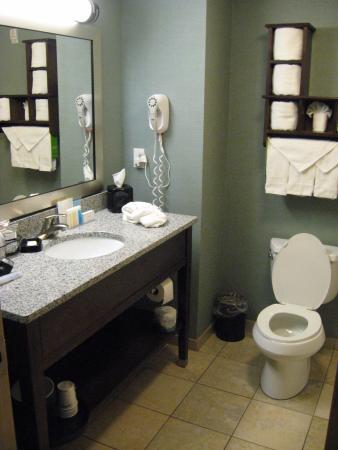 Hampton Inn & Suites Birmingham/280 East-Eagle Point: Bathroom area