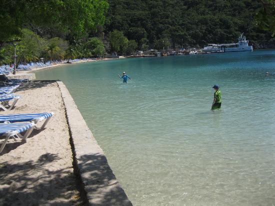 Amiga Island Haiti Reviews