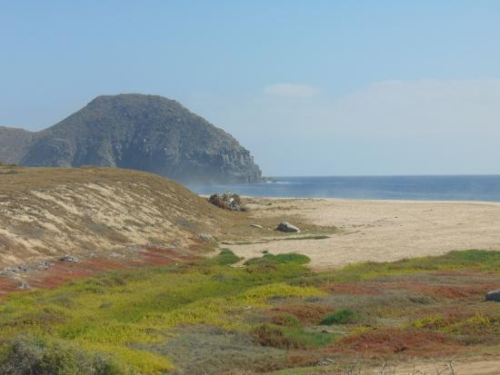 Todos Santos, Mexico: El Mirador property view from restaurant toward fishing village at Point Lobo