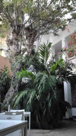 La Casa del Farol Hotel Boutique: patio principal