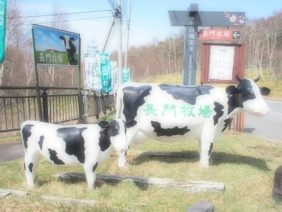 Nagato Farm: OI000008_large.jpg