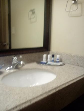 Best Western Plus Emory at Lake Fork Inn & Suites: Nice vanity lights and mirror area