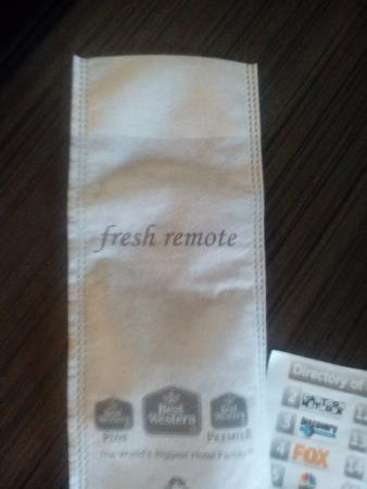 Emory, TX: Clean TV Remote, very cool plus