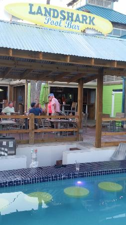 great place picture of jimmy buffett s margaritaville paradise rh tripadvisor com ph