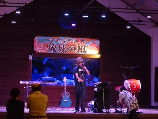 Ryukyu no Kaze Live Stage
