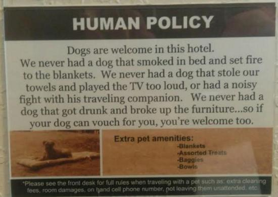 Americas Best Value Inn: Pet friendly and a funny way to state it!
