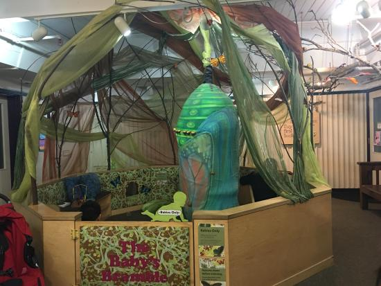 Palo Alto, CA: Junior Museum & Zoo