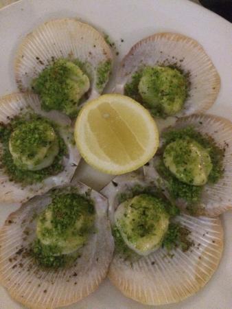 Bucci Italian Restaurant: scallops