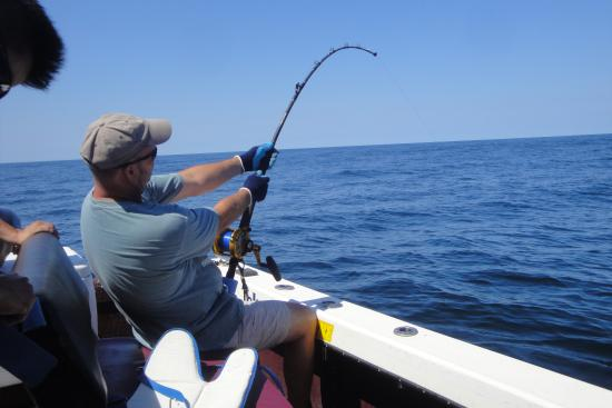 Battling a giant tuna picture of black rose fishing for Fishing charters plymouth ma