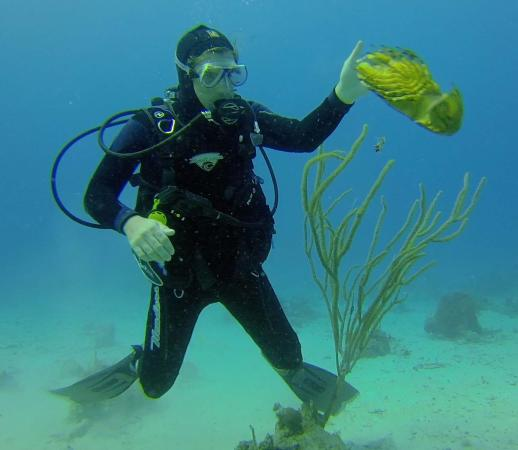 St. Thomas Diving Club: Ryan wrangles a shovel-head