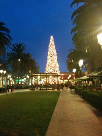See Eyewear Newport Beach Ca Fashion Island