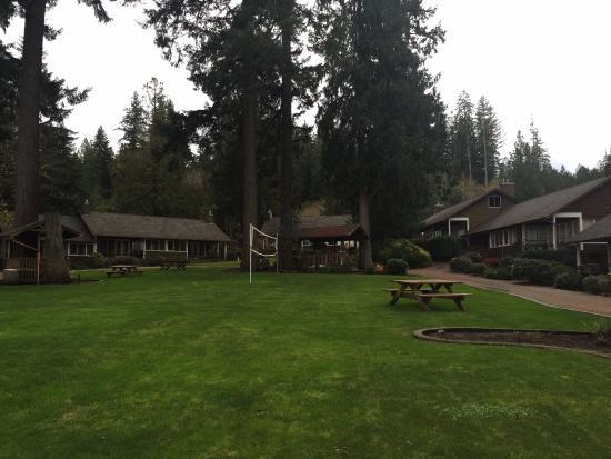 Union, WA: Family cabins