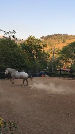 Santiago de Puriscal照片