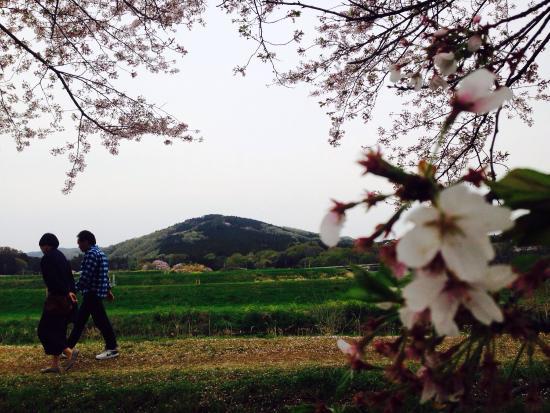 Mt. Ohirayama