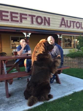 Reefton, New Zealand: photo0.jpg