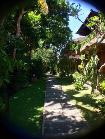 Ubud Bungalow: photo0.jpg