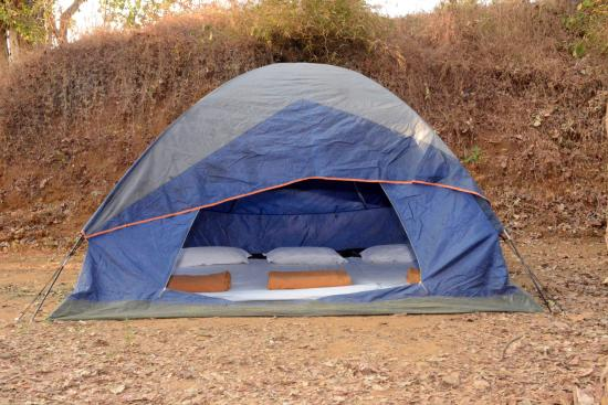 Camping Tent - Picture of Whistling Woodzs Wilderness ...