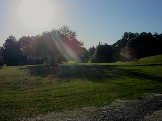 Wanee Lake Golf & RV Resort: Early morning sun from front of our RV site