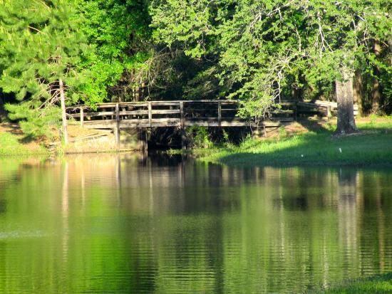Wanee Lake Golf & RV Resort: Cart path bridge over the water hazard.