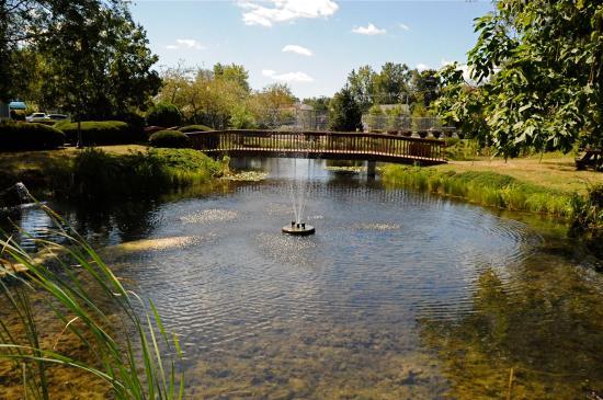Culver Cove Resort: Ponds