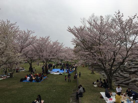 Sorimachi no Mori Park