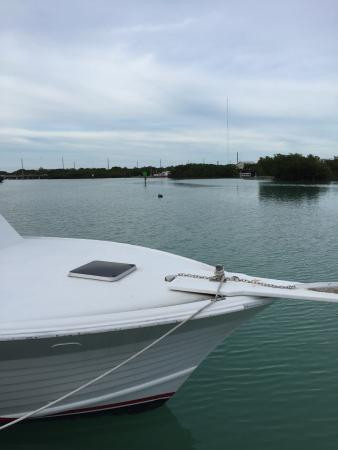 Coconut Mallory Resort And Marina: photo1.jpg