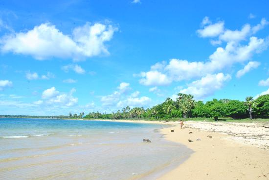 Rote Island, إندونيسيا: nikmatnya pantai nan sepi