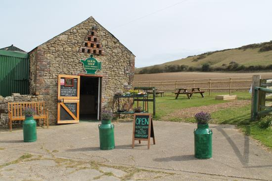 Warren Farm Shop & Tea Garden