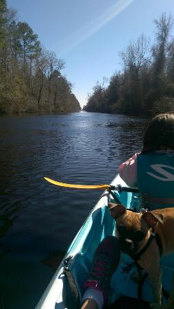 South Mills, Carolina del Norte: IMAG0097_large.jpg