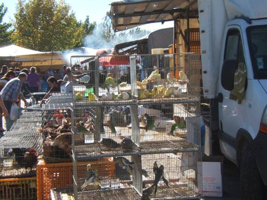 Vilar Formoso, Portugal: Mercadillo Portugal