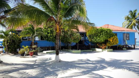 Blue Marlin Beach Resort: Back view of dining area