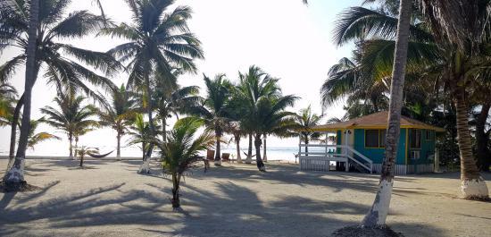 Blue Marlin Beach Resort: Walking toward our cabin #14