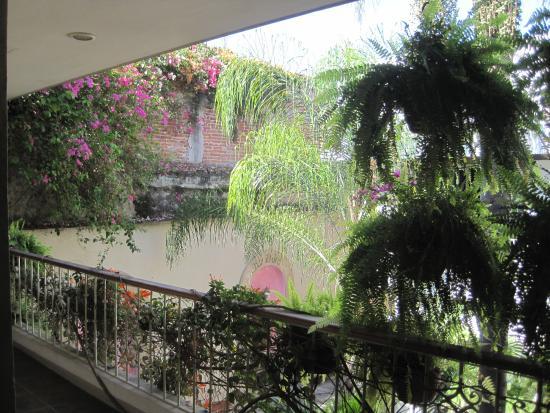Casa de Las Bugambilias B&B: From the patio into the courtyard