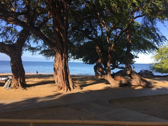 Spencer Beach Park : photo3.jpg