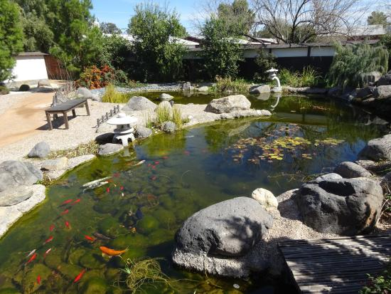 Accent area in gardens picture of yume japanese gardens for Koi pond zoning