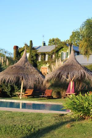 La Casa de los Limoneros: Cuentan con una piscina muy amplia, abierta.