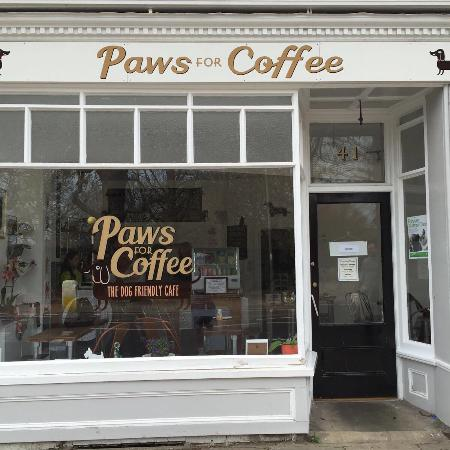 Paws For Coffee Picture Of Paws For Coffee Hampton Hill