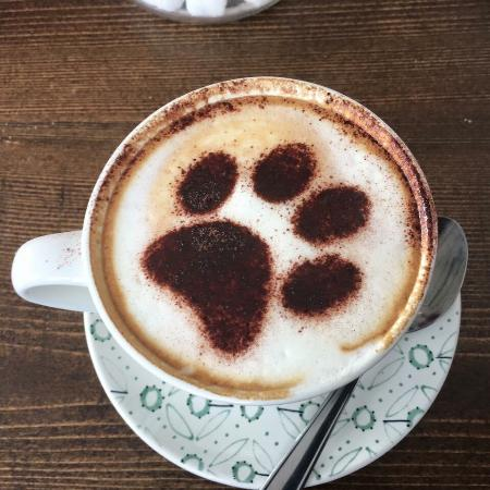 Lovely Pictures Of Paw For Coffee Paws For Coffee Hampton