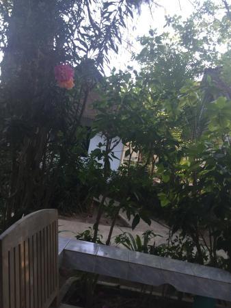 Lanta Island Resort: Blick von Terrasse