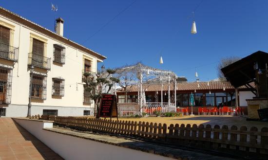 Hotel La Zubia: Solarium