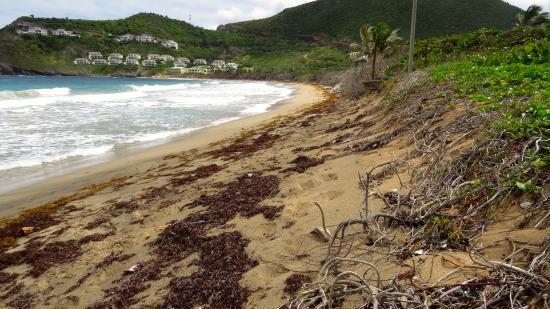 Sugar Bay Club: Beach area with undertow